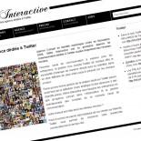 Shibo Interactive : site et blog corporate